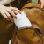 アスVEL日本ミニ保温カップ女性子供携帯保温弁当箱赤ちゃん外出補助カップ250 ml保温樽白250 ml